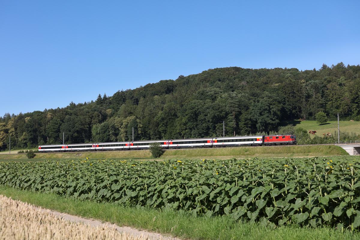 http://www.diesellokguru.de/images/CH2020/IMG_3033.jpg